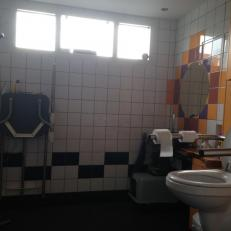 electric high/low toilet and doucheseat.